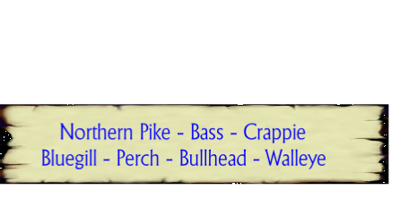 Northern Pike - Bass - Crappie